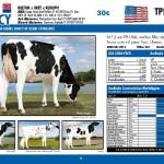 catalogo-touros_page_06