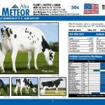 catalogo-touros_page_07