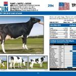catalogo-touros_page_11