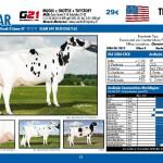catalogo-touros_page_12