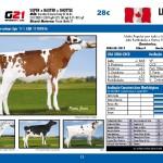 catalogo-touros_page_13