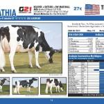 catalogo-touros_page_14