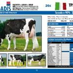 catalogo-touros_page_15
