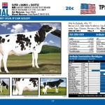 catalogo-touros_page_17