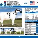 catalogo-touros_page_19