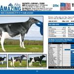 catalogo-touros_page_21