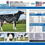 catalogo-touros_page_24