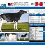catalogo-touros_page_25