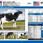 catalogo-touros_page_29