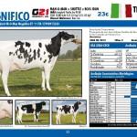 catalogo-touros_page_32