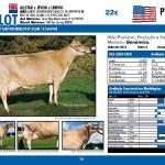 catalogo-touros_page_36