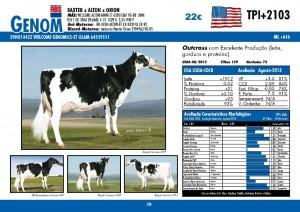 catalogo-touros_page_38