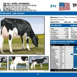 catalogo-touros_page_42