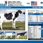 catalogo-touros_page_46