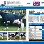 catalogo-touros_page_47