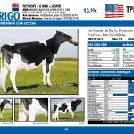 catalogo-touros_page_48