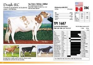 prova-final-catalogo-2013_page_12
