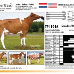 prova-final-catalogo-2013_page_14