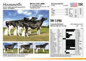 prova-final-catalogo-2013_page_29
