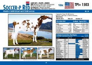 catalogo-touros_page_45