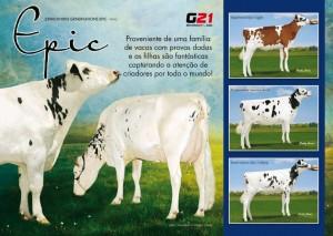 catalogo-touros_page_52