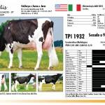 prova-final-catalogo-2013_page_17