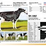 prova-final-catalogo-2013_page_21