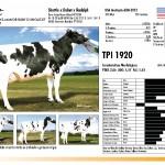 prova-final-catalogo-2013_page_25